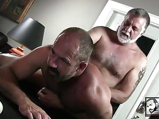 Hot Daddy Bears Fuck on the Pooltable bear (gay) blowjob (gay) daddy (gay)