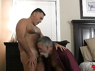 daddies gonna fuck bareback bear daddy