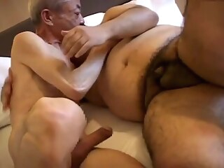 gay asian gay bear gay blowjob